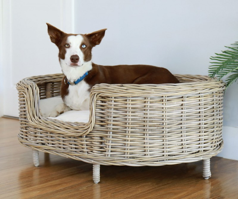 Dog Bed Wicker Animals