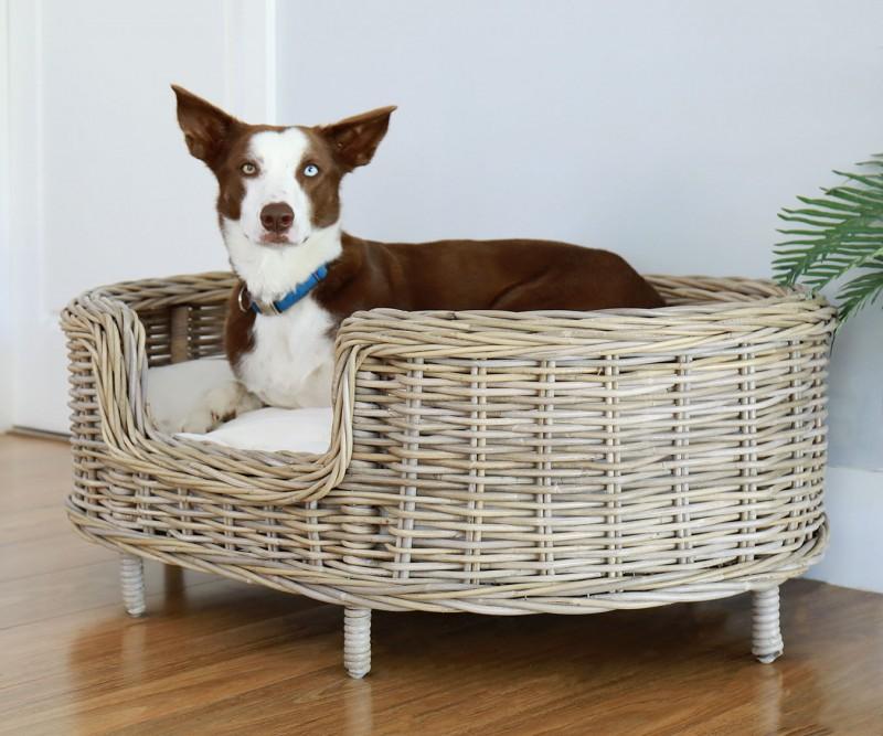 Dog Bed Wicker Animals